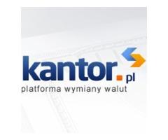 Wymiana walut przez internet - kantor.pl